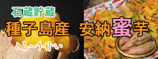 種子島産安納蜜芋