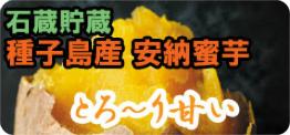 種子島産安納蜜芋 3kg
